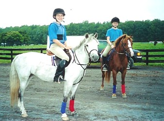 Tiger Lily and April - Section B Welsh Ponies